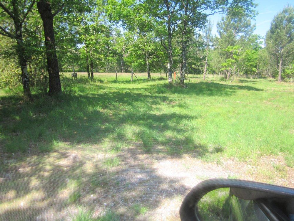 Aire camping-car à Barp (33114) - Photo 2
